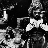 20 éve jelent meg a XX. század legnagyobb méretű és egyik legdrágább fotóalbuma: Helmut Newton: SUMO