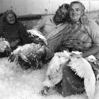Elhunyt Kudelich Lajos (1947-2016)