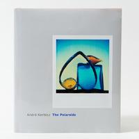 André Kertész - The Polaroids
