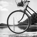 A HÉT FOTÓSA - Válogatás Ruth Orkin legendás sorozataiból