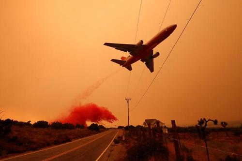 Természeti katasztrófák az év sajtófotóin (Reuters)