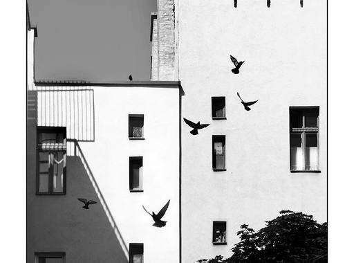 61. Képíró-képolvasó hétvége a Mai Manó Házban - Birtalan Zsolt: Az utcai fényképezés