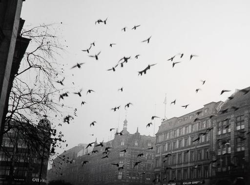 John Gutmann Amerikája - Válogatás egy San Franciscó-i fotóriporter képeiből