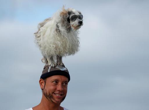 Ezek voltak 2019 legjobb állatfotói a Reuters képszerkesztőinek válogatásában