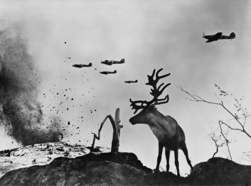 Jevgenyij Haldej: A halálra rémült rénszarvas, Murmanszk (1941)