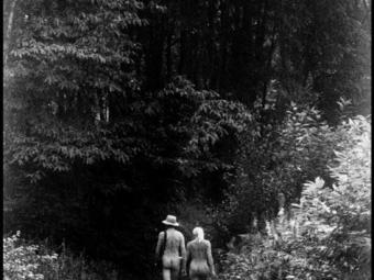 Elliott Erwitt titokban készült képei meztelen nyaralókról (1968-1984)