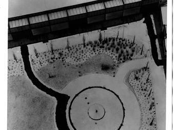 A zseniális kísérletező - Válogatás a Moholy-Nagy László kiállításunk képeiből