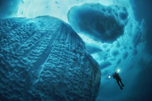 Férfiaktok női szemmel, egy autista kisfiú képei és jéghegyek alulnézetből