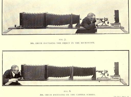 Felnagyítva – Arthur E. Smith mikrófotói egy ismeretlen világból (1904)