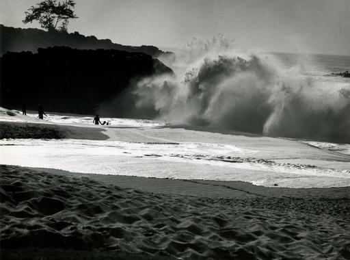 ÚJRANÉZVE – Haár Ferenc (1908-1997), aki fényes karriert futott be Hawaiin