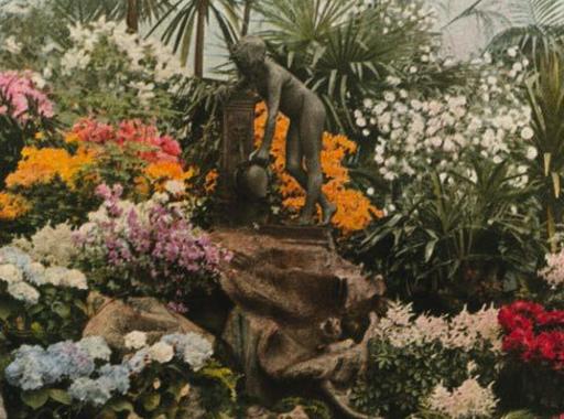 A National Geographic legelső színes fotója (1914. július)