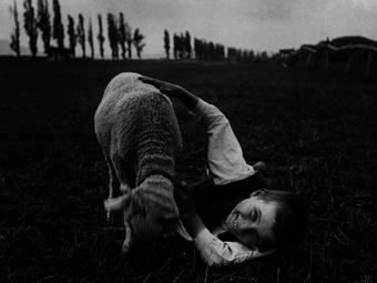 André Kertész gondolatai a fényképezésről