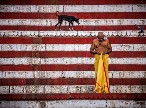 Válogatás Lóránt Attila, a National Geographic Society világhírű fotográfusának képeiből