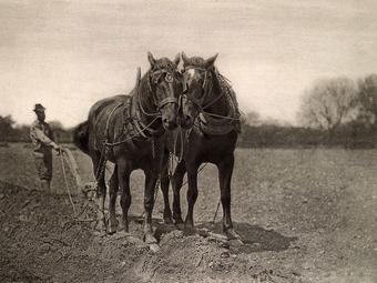 """Emerson és a """"naturalista fotó"""""""