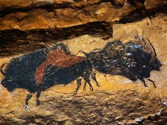 A legelső színes fotók az őskori barlangrajzokról (1947)