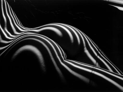 Válogatás Lucien Clergue Zebra című aktsorozatából (18+)
