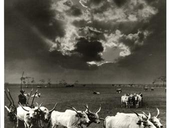 Balogh Rudolf (1879-1944) élete és ritkán látott felvételei - Tőry Klára írása