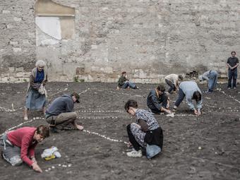 Kállai Márton: Városi természet – Közösségi Kertek Budapesten (2015)