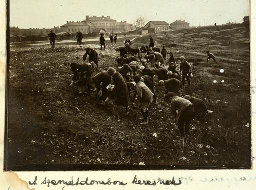 Tábori Kornél: Razzia a nyomortanyákon (Vasárnapi Ujság, 1920. február 8.)