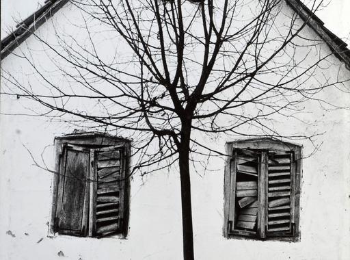Fekete és fehér - Válogatás Szász János képeiből