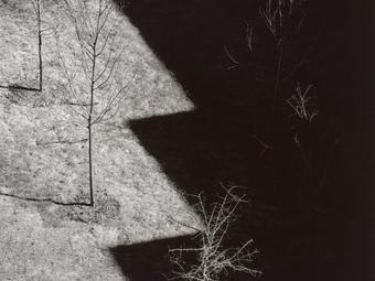Fotós idézetek - Harry Callahan (1912-1999)