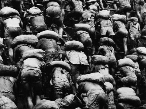 A huszadik század utolsó aranyláza Salgado fotóin