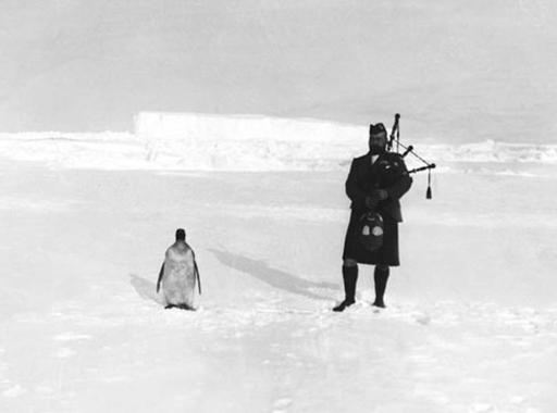 Ikonikus szerelmesfotók történetei, a leghíresebb pingvinfotó és a 6,6 millió forintos fotóalbum
