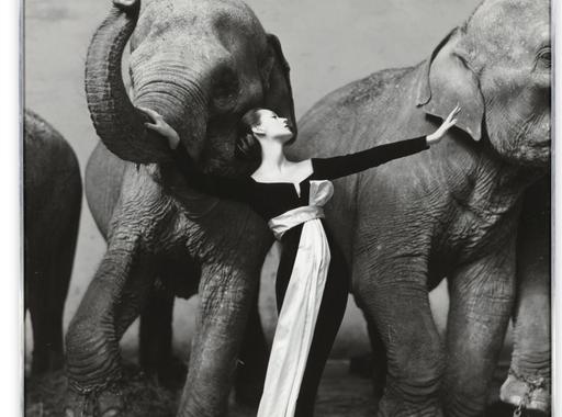 A Sotheby's árverésén közel háromszázmillió forintot várnak a világ egyik legismertebb divatfotójáért