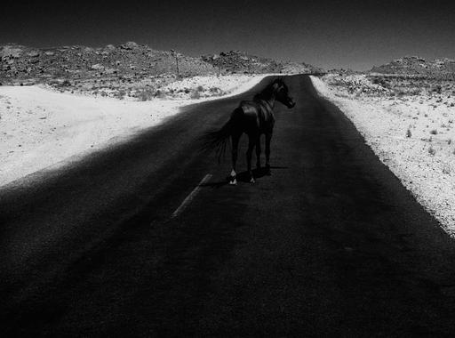 Egy finn fotós képei Namíbiából – Aapo Huhta: Omatandangole sorozata most a PaperLab Galériában látható