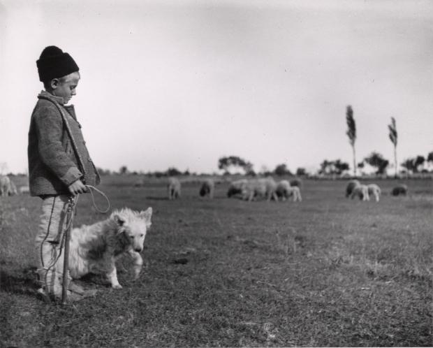 Fotó: André Kertész: A becsei kiskondás, Szigetbecse, 1914. május 5./1971. <br />204x253 mm zselatinos ezüst © André Kertész Emlékmúzeum, Szigetbecse