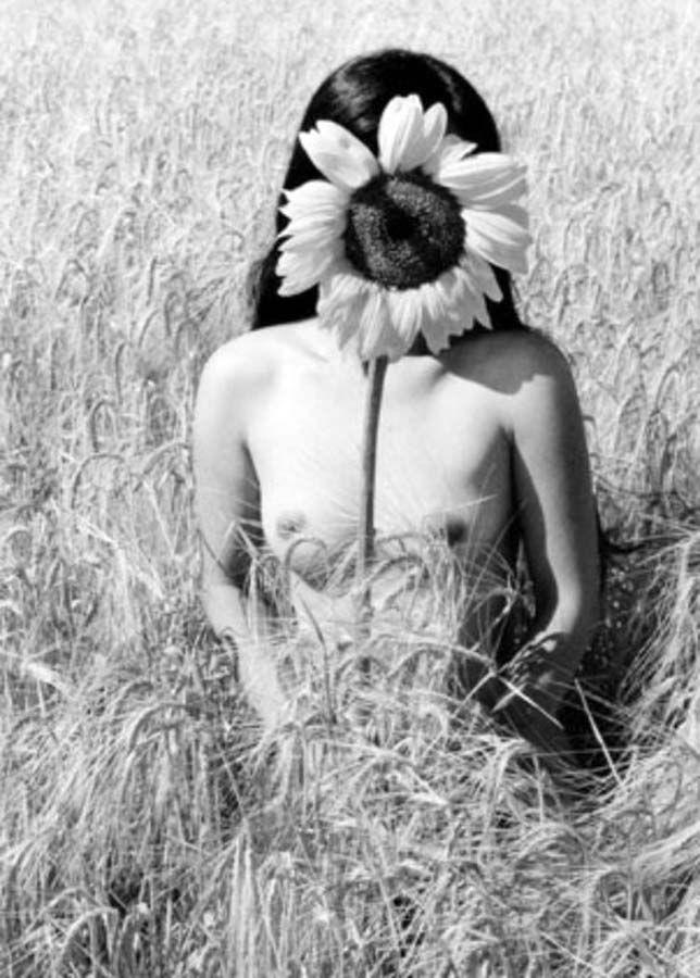 Fotó: Edouard Boubat: Napraforgó, 1985 © Edouard Boubat