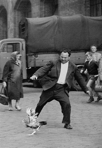 Fotó: Friedmann Endre: Csirkefogó, 1963 © Friedmann Endre