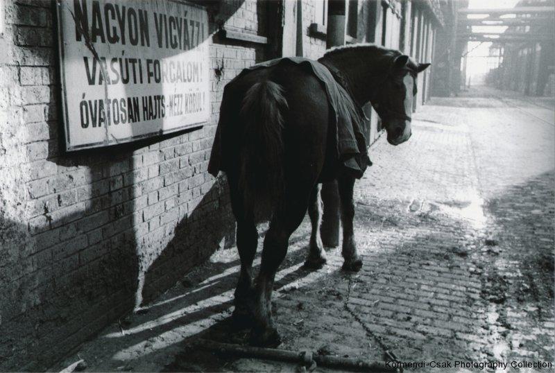 Fotó: Friedmann Endre: Sorsok, 1967 © Friedmann Endre / Körmendi-Csák 20. századi Magyar Fotóművészeti Gyűjtemény