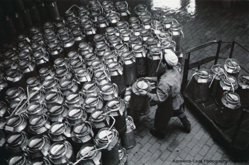 Fotó: Friedmann Endre: Budapesti Tejipari Vállalat, Kelenföld, 1958  © Friedmann Endre / Körmendi-Csák 20. századi Magyar Fotóművészeti Gyűjtemény