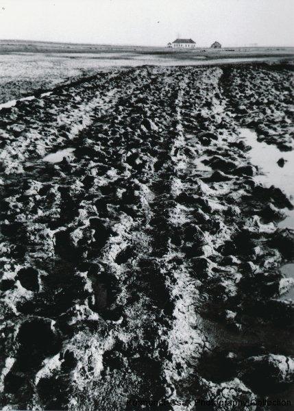 Fotó: Friedmann Endre: Részlet a Tanyasi iskola című sorozatból, 1963 © Friedmann Endre / Körmendi-Csák 20. századi Magyar Fotóművészeti Gyűjtemény