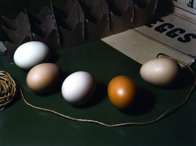 Fotó: Imogen Cunningham: Öt tojás, 1951, Cibachrome © The Imogen Cunningham Trust