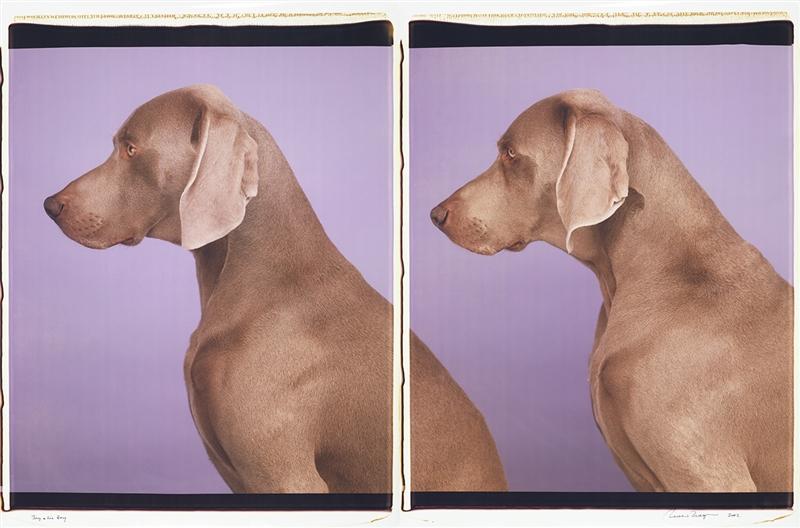 Fotó: William Wegman: Boy and his Boy, 2002<br />Polaroid<br />2 panels of 0.51m x 0.61m<br />© William Wegman. Image courtesy of William Wegman.