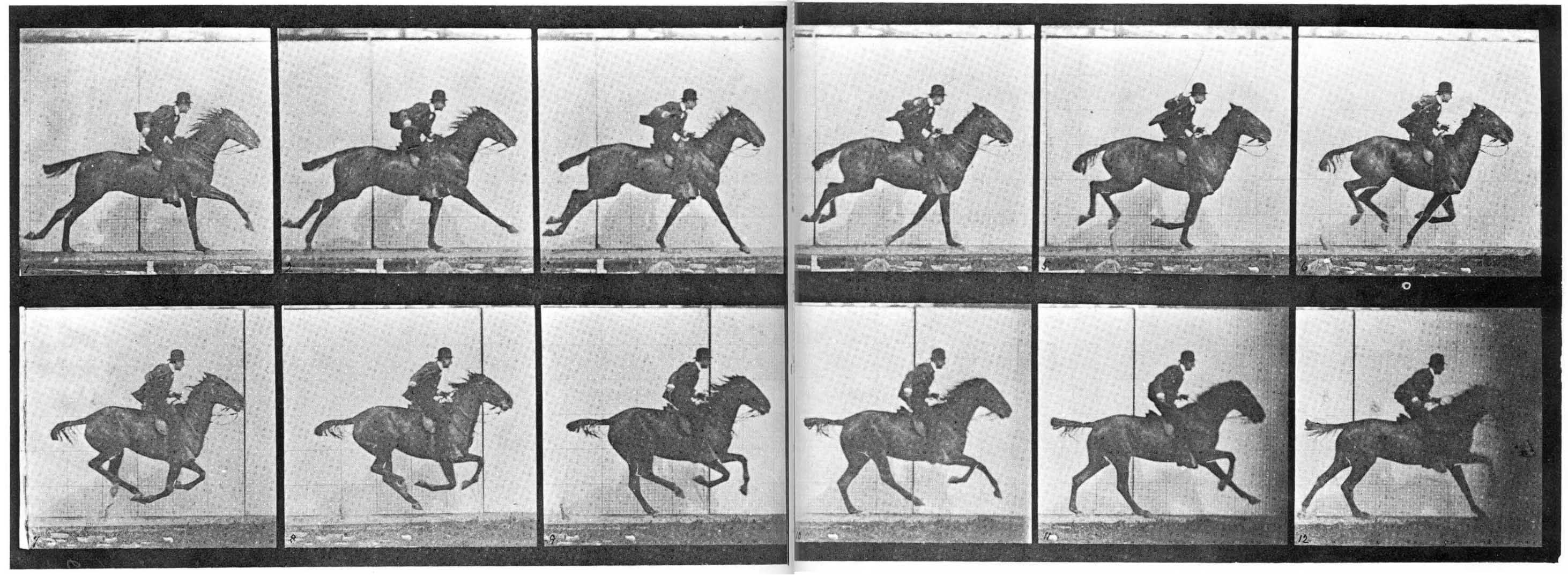 muybridge-horse2.jpg