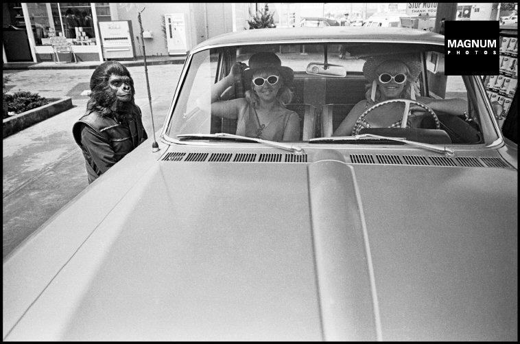 Fotó: Dennis Stock: A Majmok bolygója forgatásán, Kalifornia, 1967 © Dennis Stock/Magnum Photos
