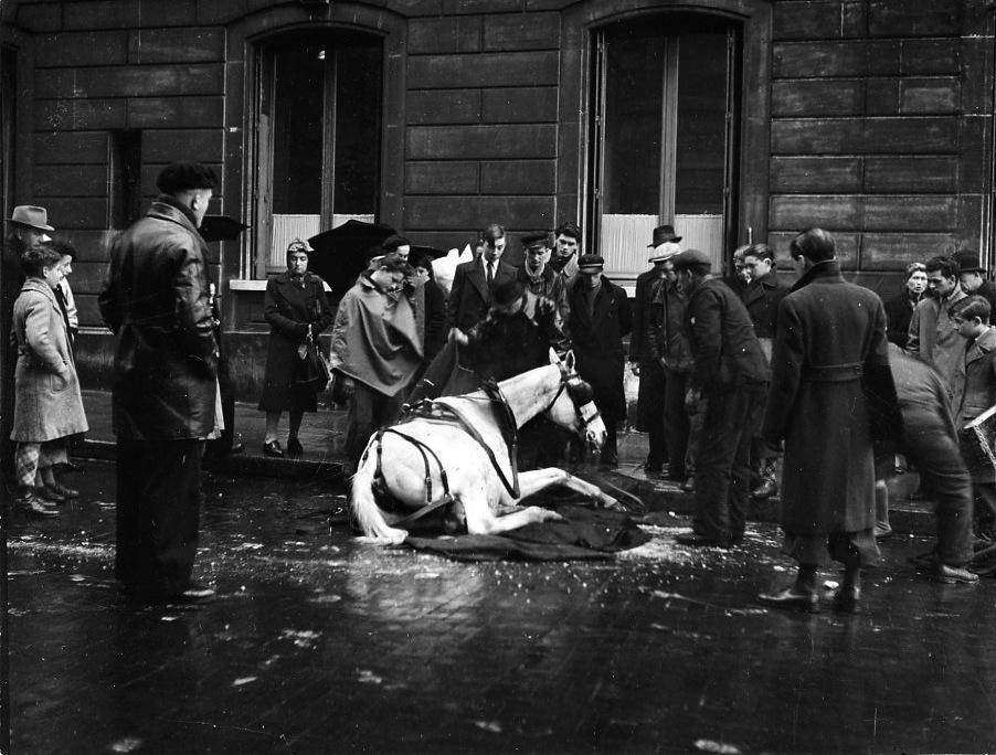 Fotó: Robert Doisneau: A felbukott ló, Párizs, 1942, 18x24cm, zselatinos ezüst © Atelier Robert Doisneau