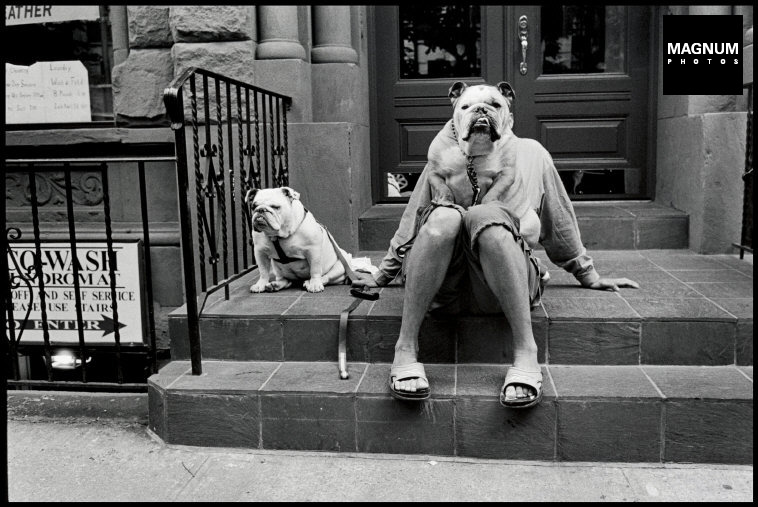 Fotó: Elliott Erwitt: New York City. 2000 © Elliott Erwitt/Magnum Photos