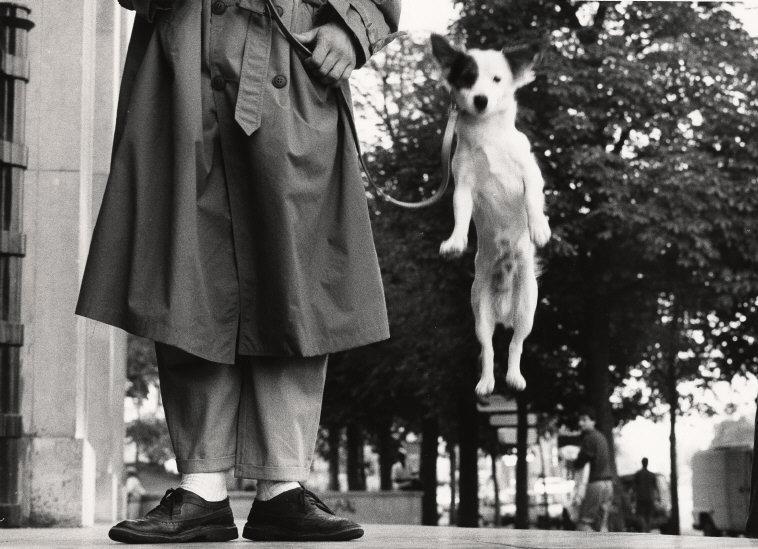 Fotó: Elliott Erwitt: Párizs, Franciaország, 1989 © Elliott Erwitt / Magnum Photos