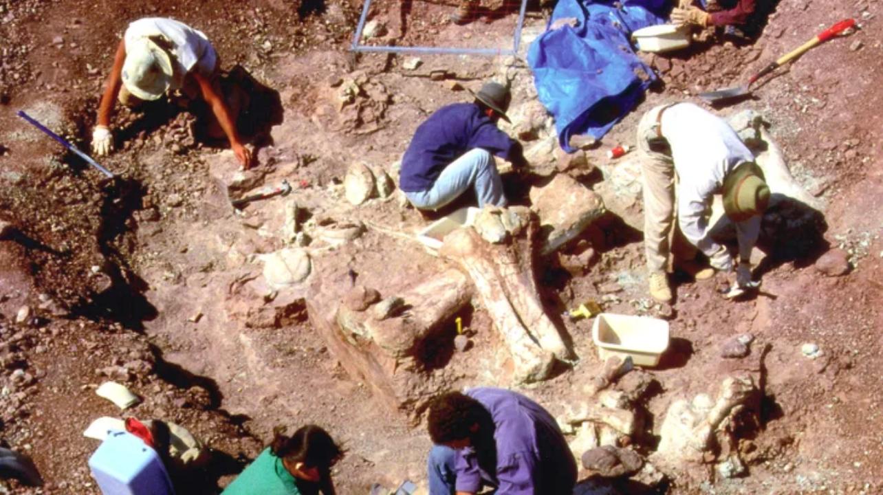 Ami biztos: az előző kép felső sorának jobb oldalán található két fotó például a Chicagói Egyetem nigériai, dinoszaurusz ásatásainak 1991-ben készült manipulált fényképei, amelyekhez valaki hozzáadta egy óriás koponya képét.