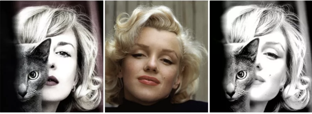 A cicával látható hölgy, Anna Vihastaya az 500px oldalra töltötte fel a képét 2011 októberében. A Monroet ábrázoló fotó 1953-ban készült. Az ikonikus színes képet a világhírű fotográfus Alfred Eisenstaedt készítette Kaliforniában.