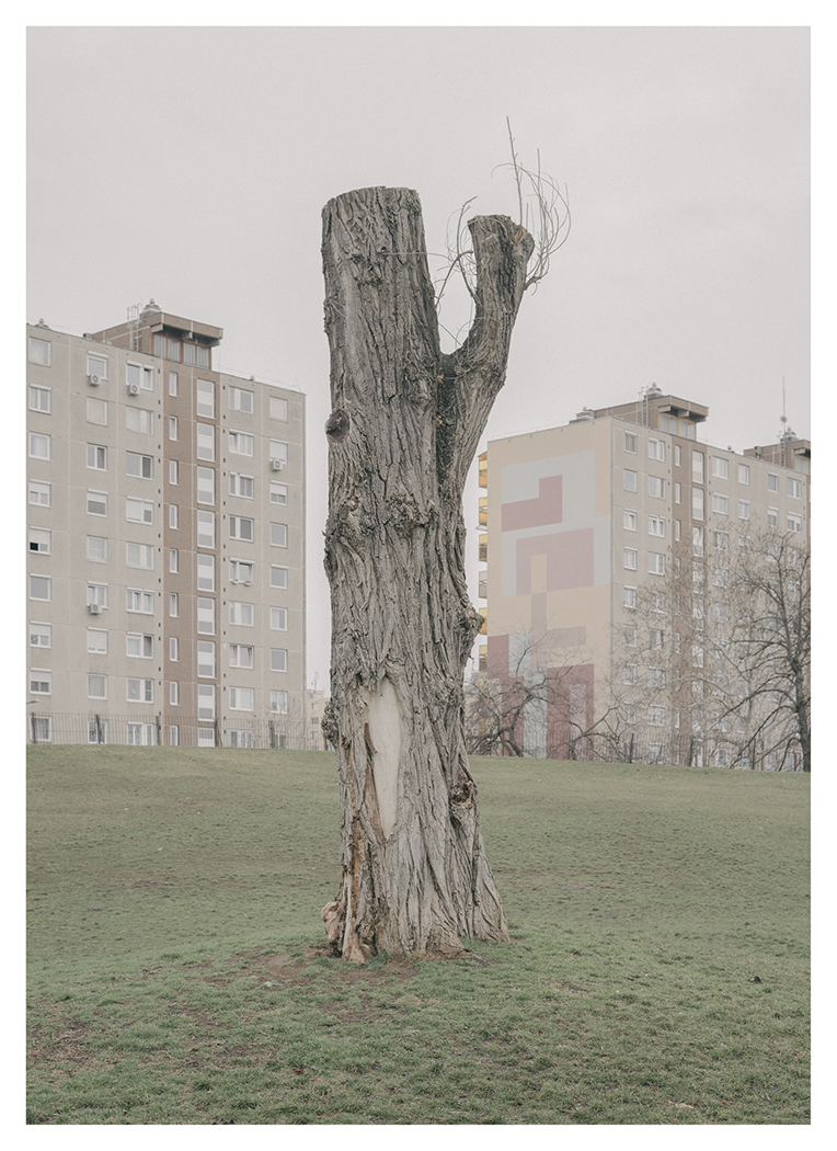 Fotó: Varga Domonkos: Untitled (surface) (a Res Materialis c. sorozatból), 2019