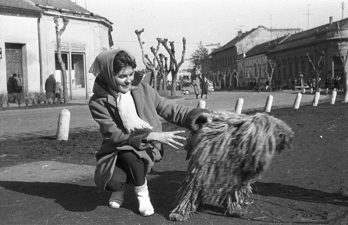Fotó: Hősök parkja, balra a Dózsa György utca, szemben a Szabadság utca. Mohács, Magyarország, 1964 © Fortepan / Krantz Károly