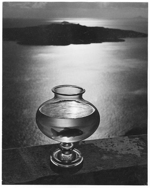 herbert_list_santorini_1937.jpg