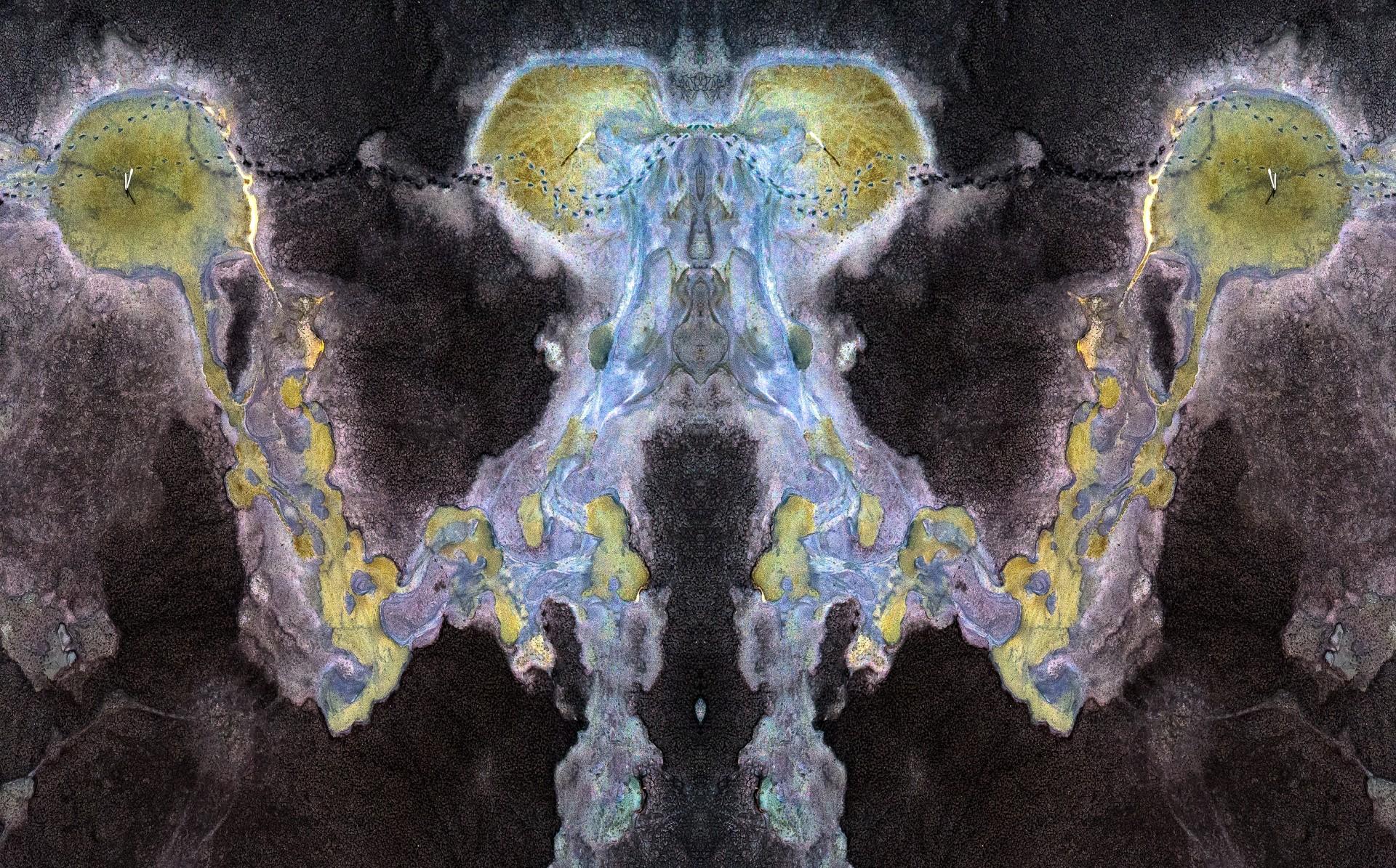 Fotó: Lang Nándor: Mantis<br />Kategória: Kompozíció, forma és kísérletezés<br />Helyezés: 2. díj<br /><br />Imádkozó sáskára emlékeztető alakzatot ölt a leeresztett biatorbágyi halastó medrében talált motívum tükrözött képe.