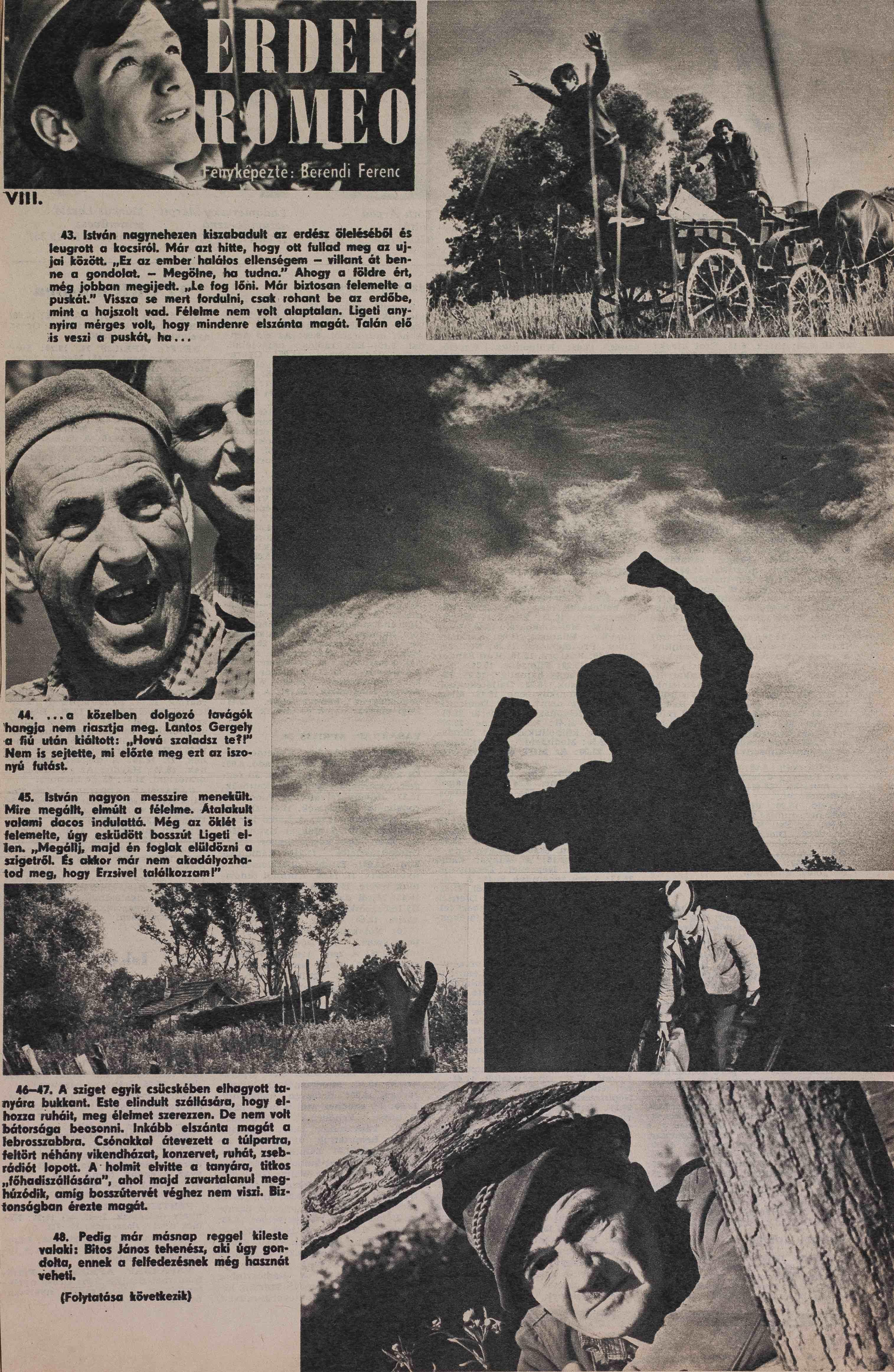 KÚ – 1972. XIII. évf. 26. sz. 13. o.<br />Erdei Rómeó 16. rész. <br /><br />ERDEI ROMEO 1-16. rész<br />fényképezte: Berendi Ferenc<br />KÉPES ÚJSÁG – 1972 XIII. évf. 10.- 26. szám 13. o.<br />