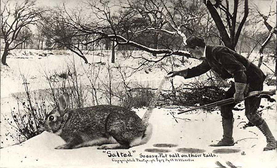 Fotó:William H. Martin: 1909 © Martin Post Card Company